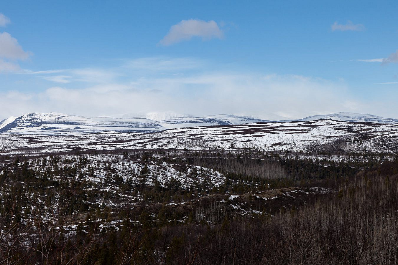 Fins landschap