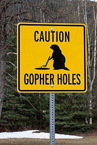 Gopher holes :D
